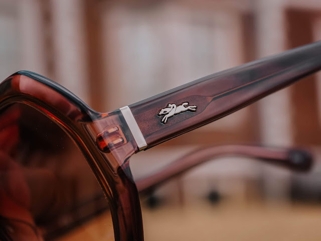 Longchamp LO623S Sunglasses Shop Blog Review