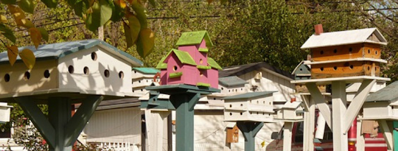 Birdhouse Collection of Different Heights