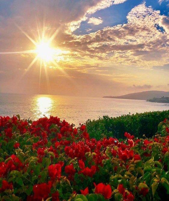ولكل يوم سيء نهاية وبداية وصباح جديد