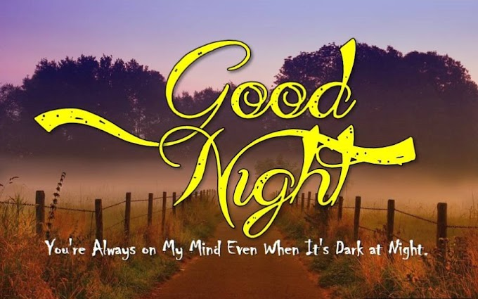 Good Night Quotes In English - Good Night Status & Images