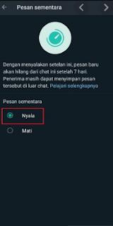 Cara Mengaktifkan Pesan Sementara Whatsapp Mudah