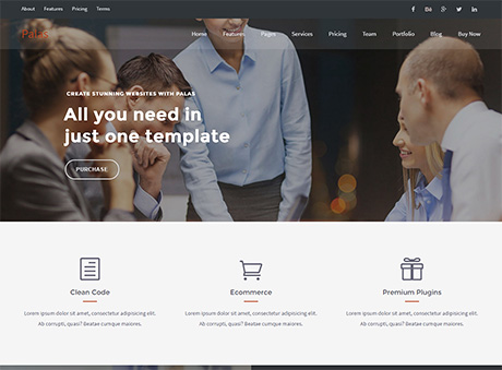 https://themeforest.net/item/palas-multipurpose-business-wordpress-theme/12276451?ref=dynamicsoft