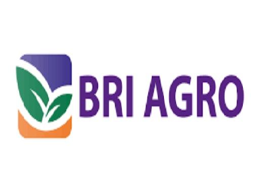 Lowongan Kerja Bank BRI Agro Posisi Account dan Funding Officer
