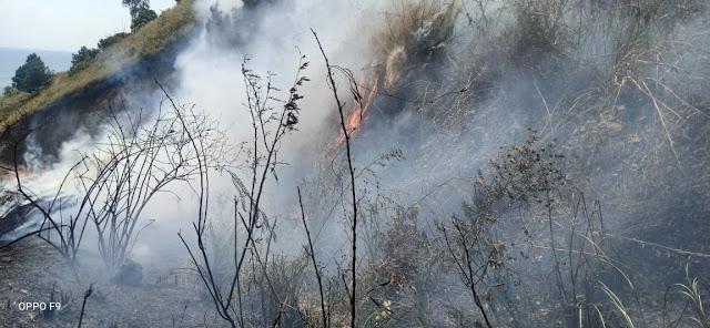 Kawasan Hutan dan Lahan Sigumoi di Sumut Terbakar