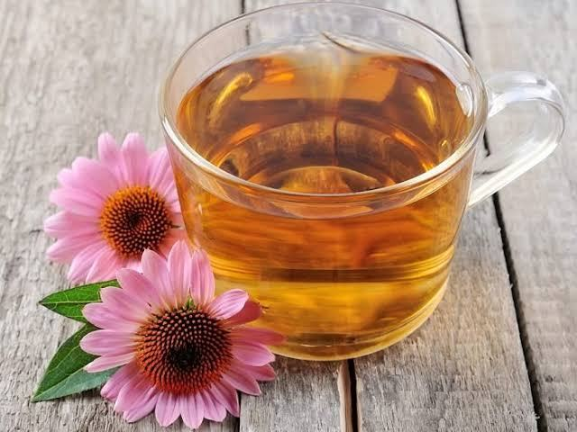 How to Make The Perfect Cup of Echinacea Tea To Boost Your Immune System