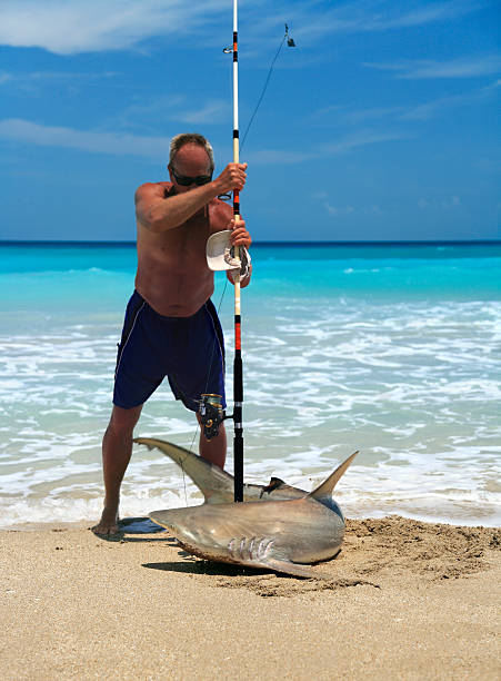 Shark Fishing from the Beach -  Can Be Addictive