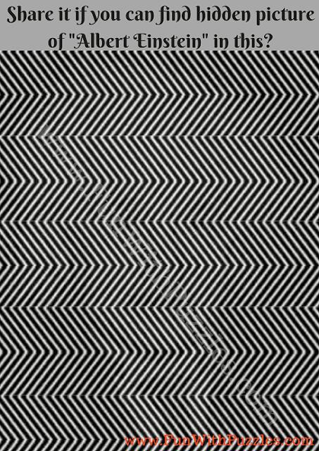 Hidden Picture Puzzle of  Albert  Einstein