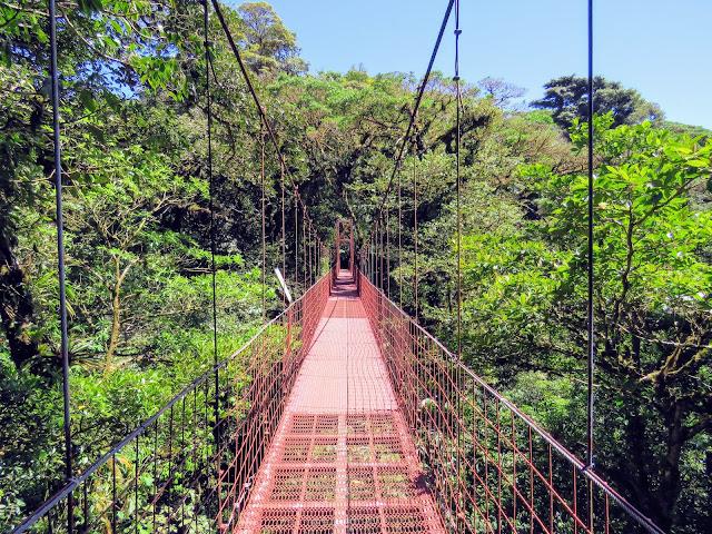 Costa Rica Itinerary: Mistico Arenal Hanging Bridges