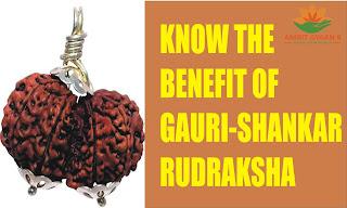 Know The Benefit Of Gauri Shankar Rudraksha
