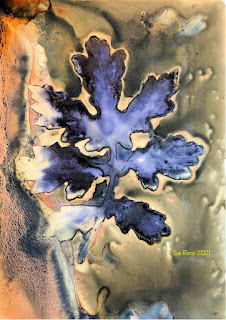Sue Reno_wet cyanotype_image 881