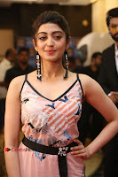 Actress Pranitha Subhash Pos in Short Dress at SIIMA Short Film Awards 2017 .COM 0149.JPG