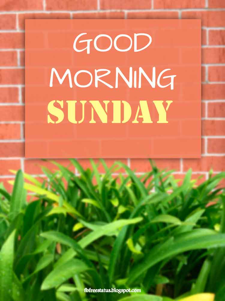 Good Morning Sunday.