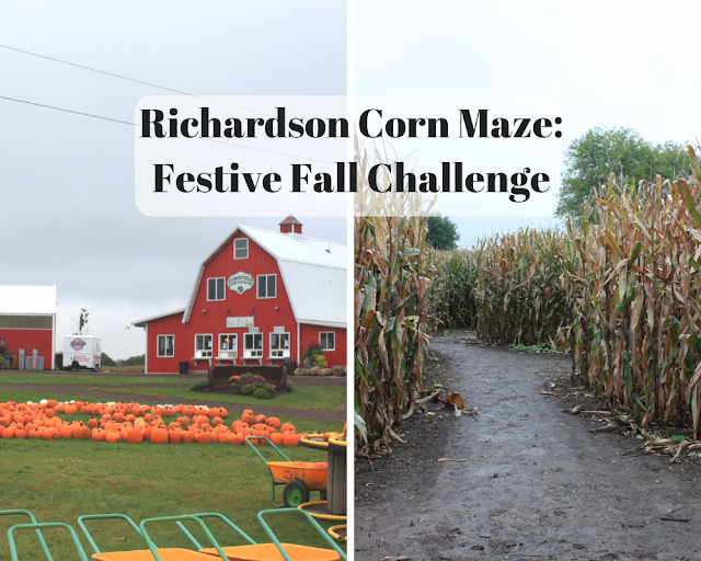 Richardson Corn Maze in Spring Grove, Illinois: A Festive Fall Challenge