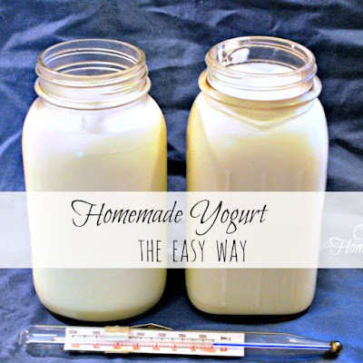 How to make yogurt at home without a yogurt maker.