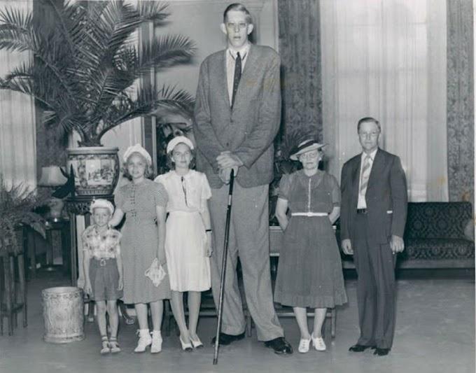Кой е най-високият човек в света