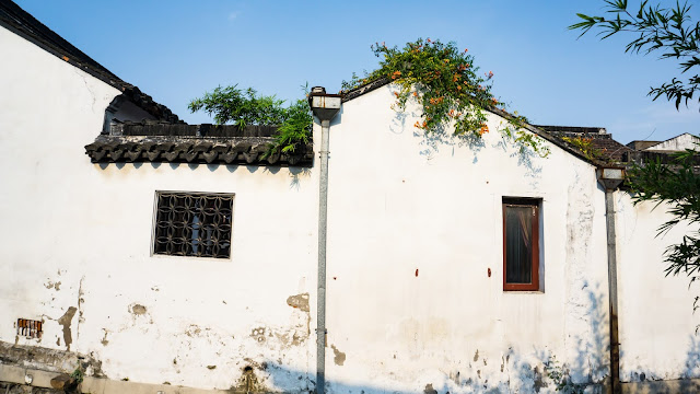 The representative of Jiangnan culture: the customs of the Wu-speaking area
