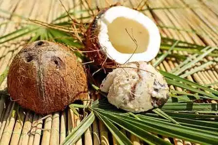Responsive image, Coconut to improve eyesight
