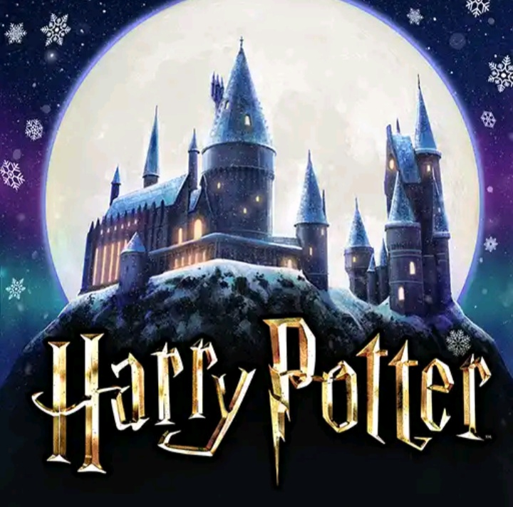 Hogwarts Mystery Energie