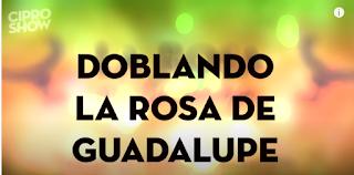 Ver Doblando Rosa de Guadalupe CiproShow capitulo 1
