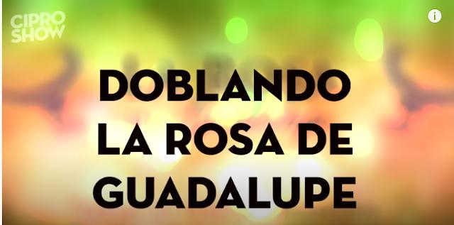 ⇒ Ver Doblando Rosa de Guadalupe CiproShow capitulo 1