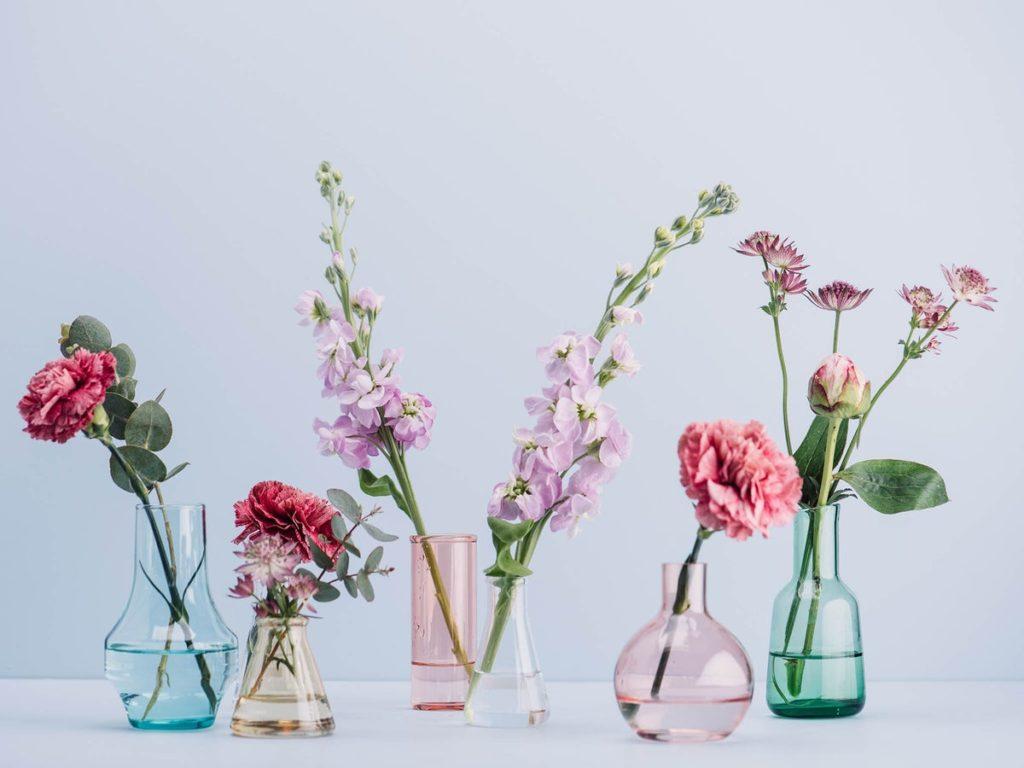 cvijece_dom_sreca