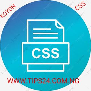 Koyon css tips24.com.ng