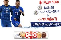 Logo Ringo ''Insieme si vince 2020'' : in palio 424 maglie Nazionale e 1000 palloni da calcio