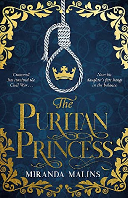 The Puritan Princess by Miranda Malins book cover