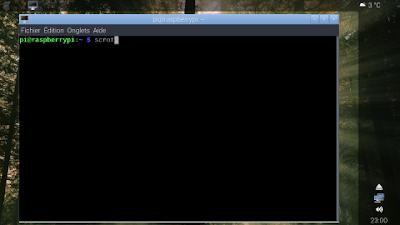Raspberry Pi OS 32 bits Lite stock themed