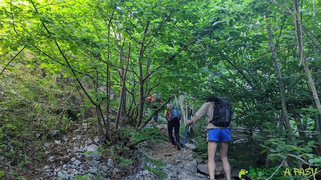 Foz de Palombar camino al Tiatordos