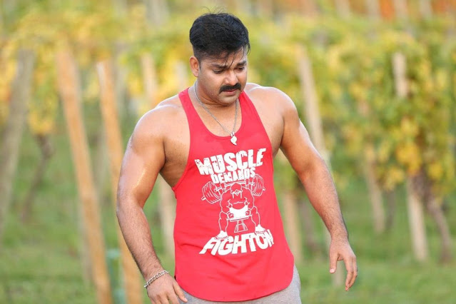 Pawan Singh Stage Show Fees