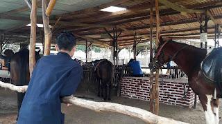 D' Ranch Bandung 3