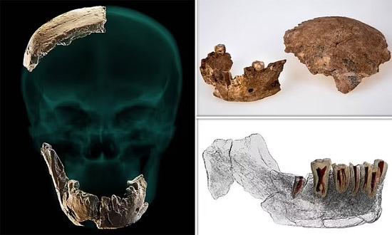 Novo Tipo de Humano antigo desconhecido é descoberto em Israel - Img 3