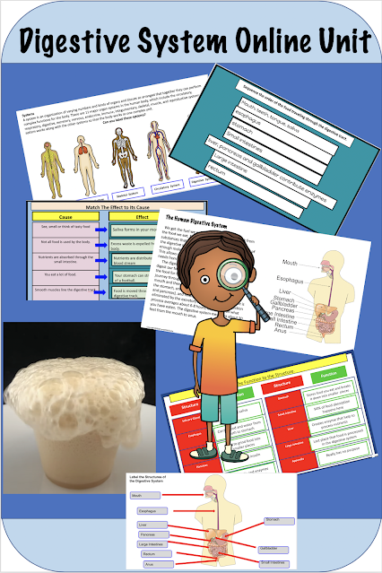 Digestive System Distance Learning Unit NGSS MS-LS1-3 and Utah SEEd 7.3.3