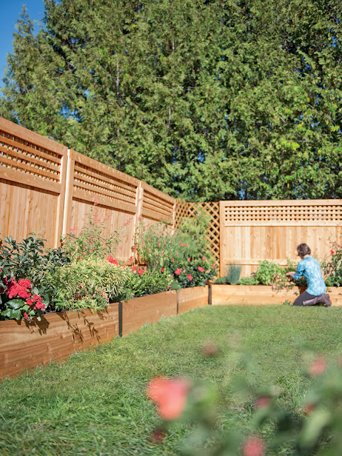 Border raised bed