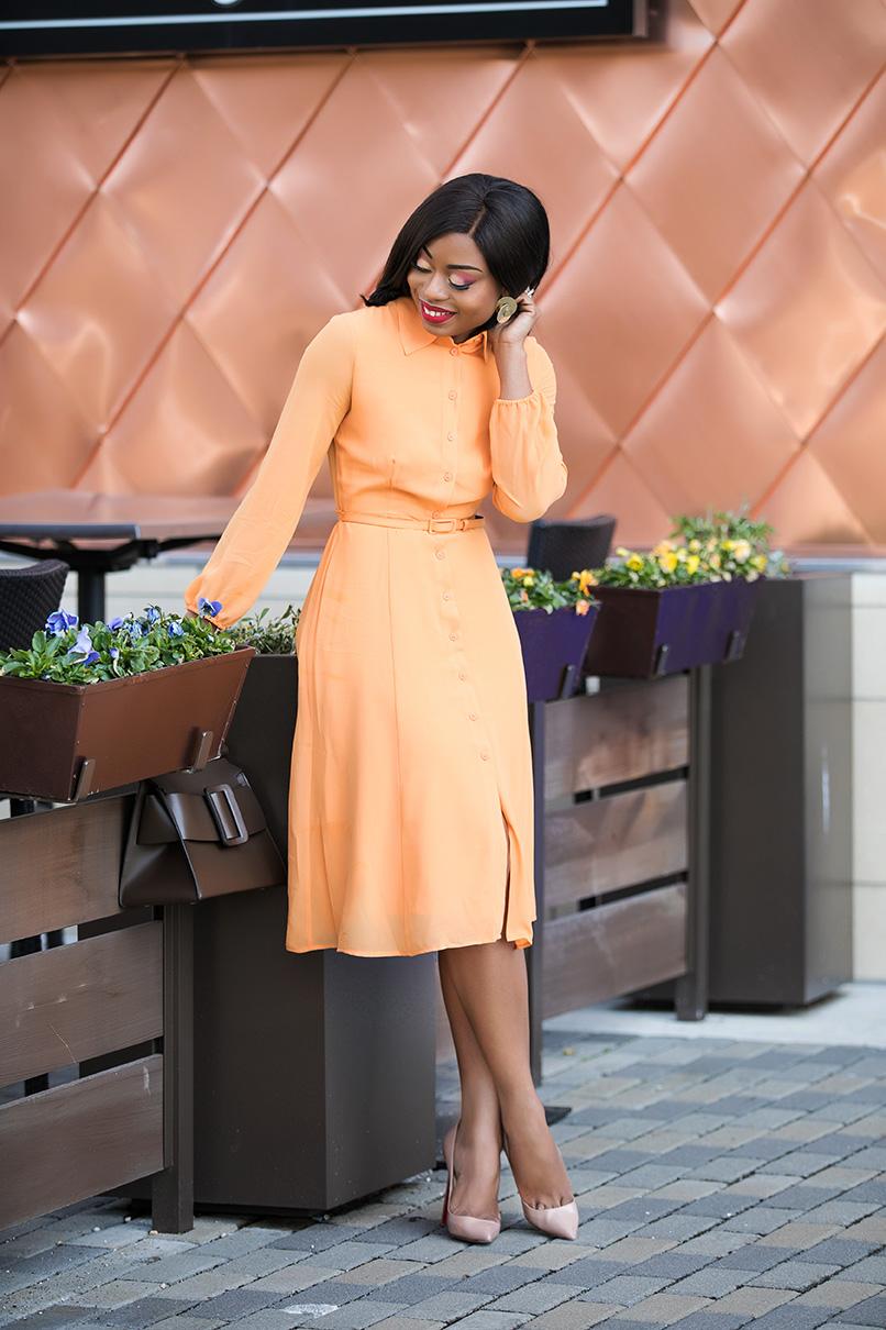 new york and company eva mendes spring shirtdress, www.jadore-fashion.com