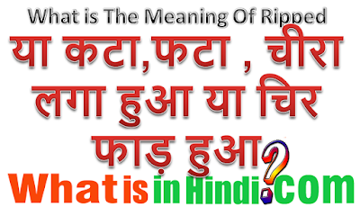 What is the meaning of Ripped jeans in Hindi