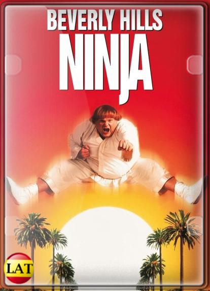 Un Ninja en Beverly Hills (1997) DVDRIP LATINO