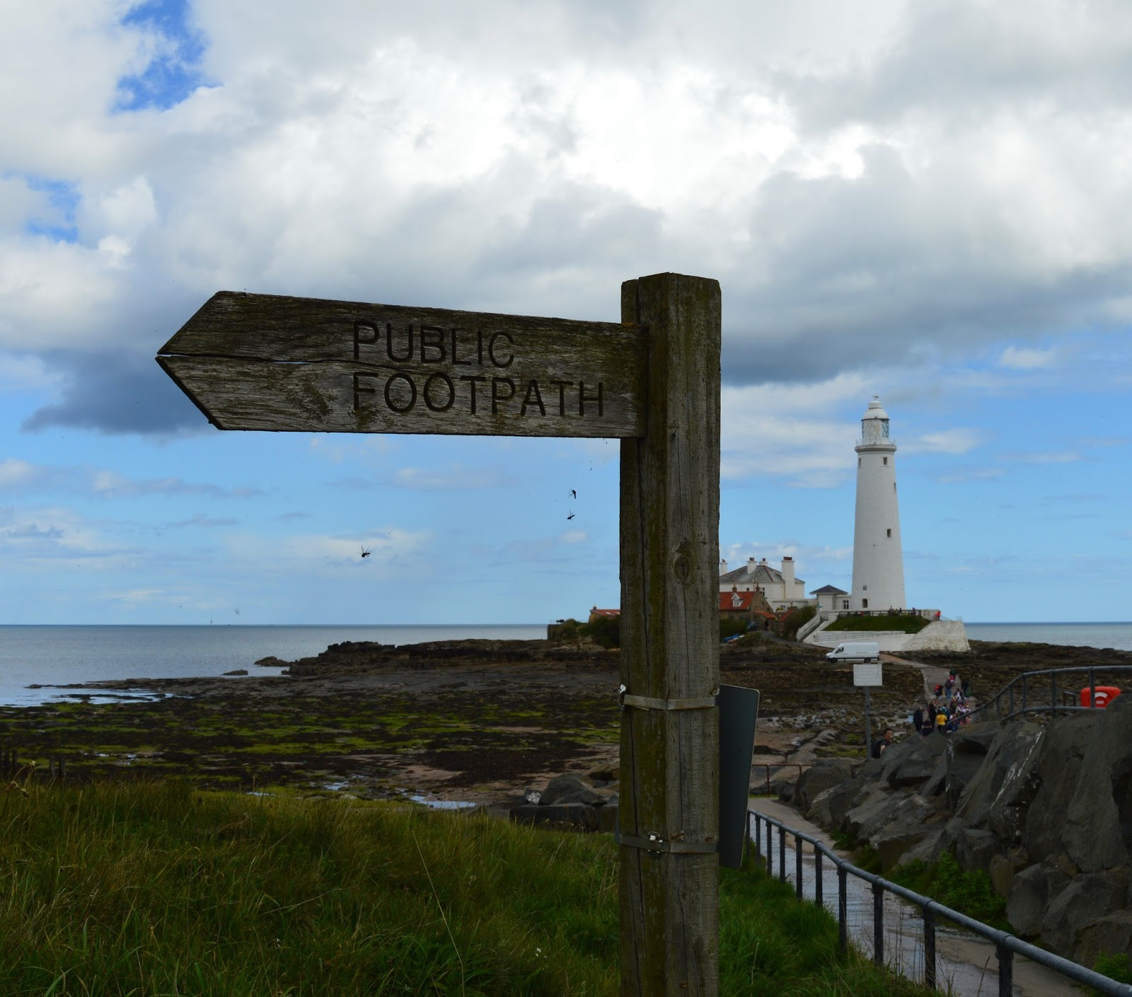10+ Easy Coastal Walks in North East England  (less than 2 hours long) - St Mary's Lighthouse Path