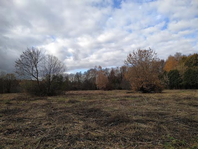 Измайловский парк осенью