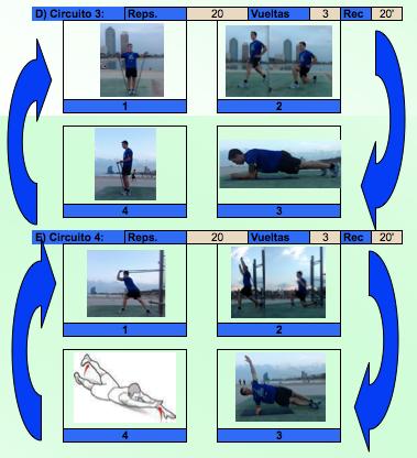 Circuito de musculación 2