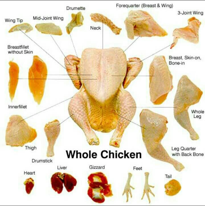 48+ Rib chicken artinya information