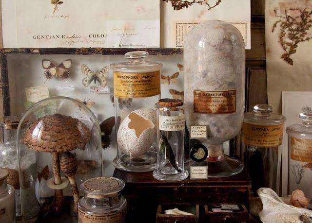 вдохновение, ваяние, винтаж, декор, дом, лепка, соленое тесто, магия, миниатюры, натюрморт, природа, рукоделие, сказка, скульптура, handmade, фотография, curiosities, cabinet of curiosities, inspired by nature, маленькие миры, мир в склянке, мир в банке, диковинка