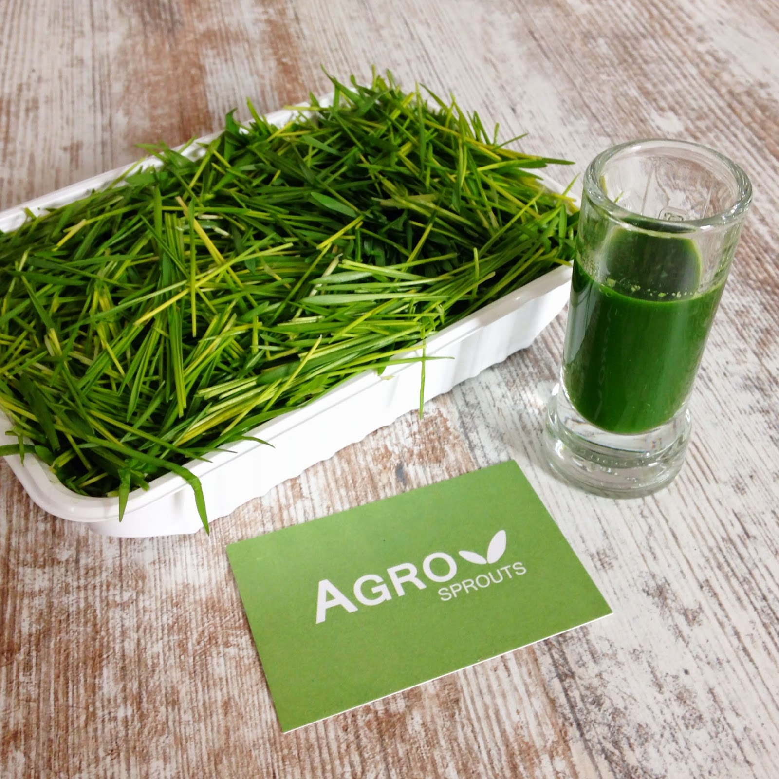 www.agrosprouts.at