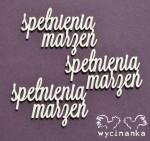 http://wycinanka.net/pl/p/CATCH-YOUR-DREAMS-napisy-spelnienia-marzen/4824
