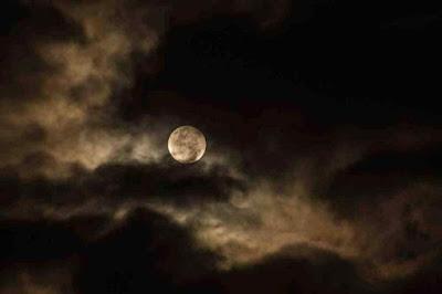Das Ungeheuer – Leo Tolstoi – Märchen