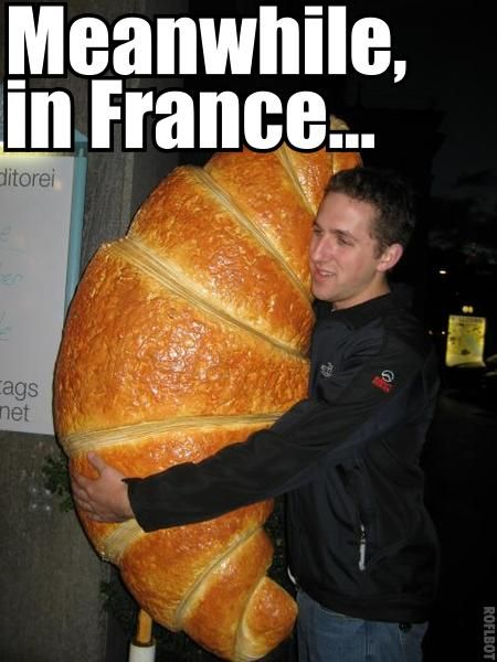World Wildness Web Meanwhile In France