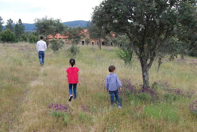 Campo en primavera con flores silvestres. Hay un padre y dos niños paseando y una casa al fondo.