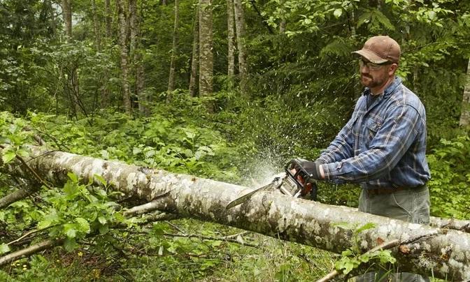 Contoh Interaksi Manusia Dengan Lingkungannya Alam Sekitar Erincoodi