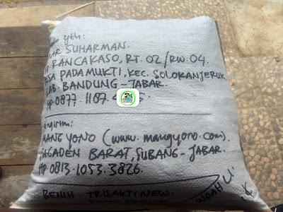 Benih padi yang dibeli    OMAR SUHARMAN Bandung, Jabar. (Setelah packing karung ).